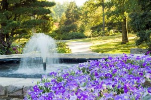 brookside_gardens_maryland