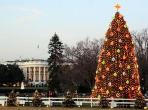 national-christmas-tree-day